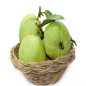 Guava VizagShop.com