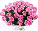 flower13 VizagShop.com