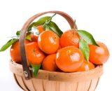 orange VizagShop.com