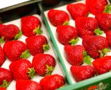strawberry1 VizagShop.com