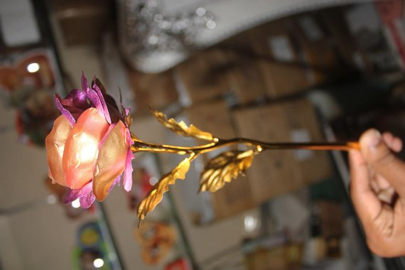 Golden Rose with stem VizagShop.com