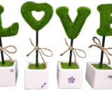 love VizagShop.com