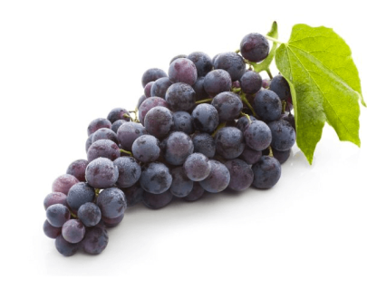 Black Grapes In Vizag