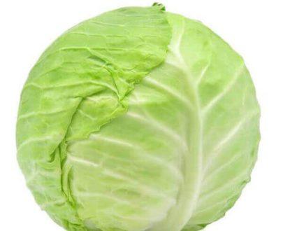 cabbage vizag VizagShop.com