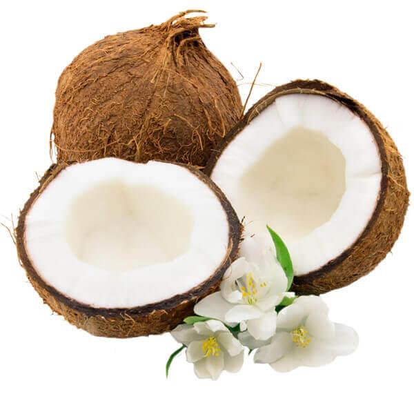 Buy Fresh Coconuts in VIsakhapatnam