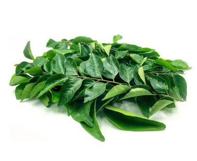 Curry Leaves in Visakhapatnam