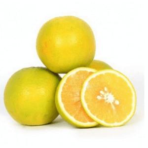 Buy Fresh Bothaipallu in Visakhapatnam