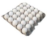 Buy Eggs Tray in Vizag