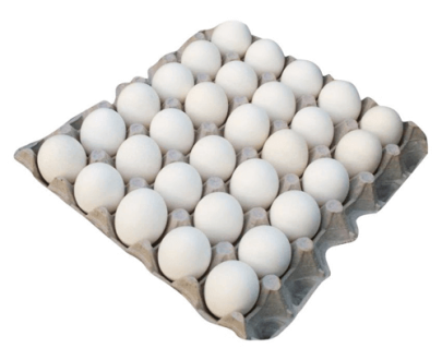 Buy Eggs Tray in Vizag